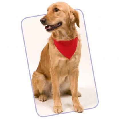 collar bandana poliester perros roja azul